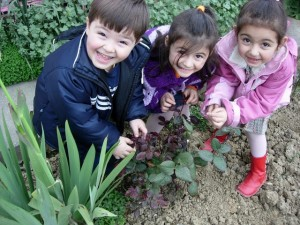 Turkey: Tree Planting Challenge  Three particularly happy young gardeners are having lots of fun with the Tree Planting Challenge in Turkey as part of the 10:10 Global challenge!