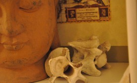 Close to the Bone in a Roman Crypt