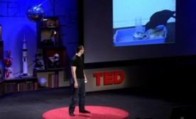 Joshua Klein on the Intelligence of Crows