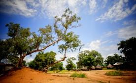 My Private Sudan: Part I