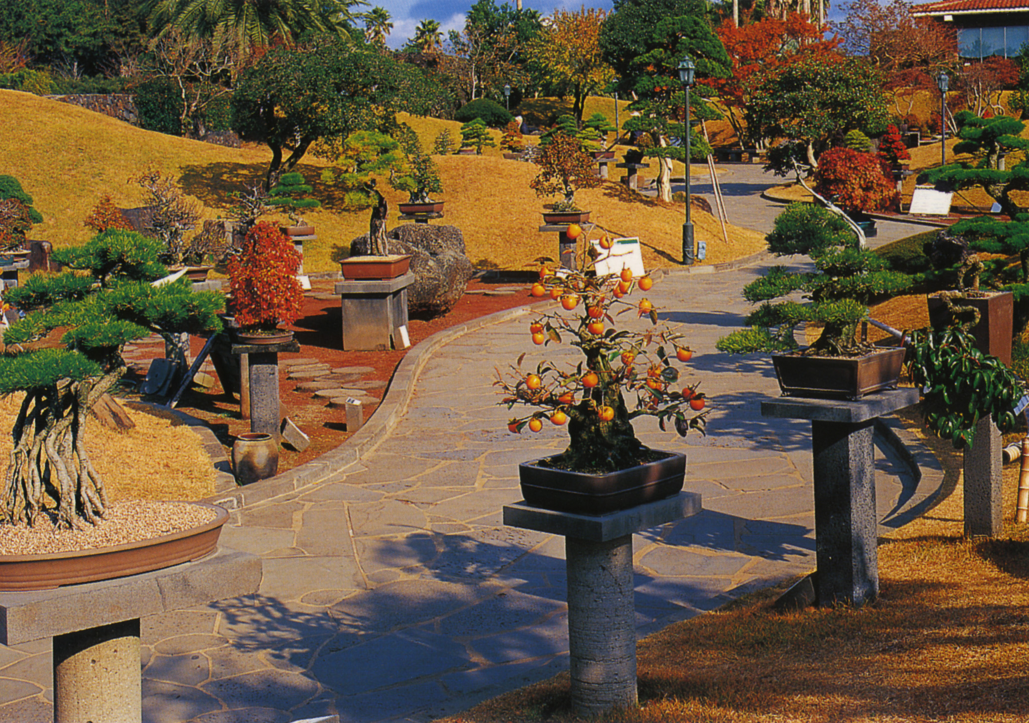Soul in the Soil: The Most Beautiful Garden in the World – LIFE AS A ...