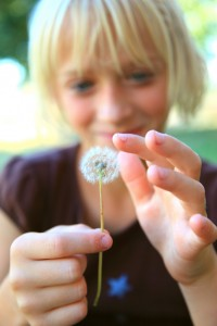 Happy Child Touching Dandelion Seeds