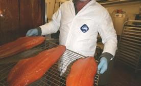 Sexy Smoked Salmon