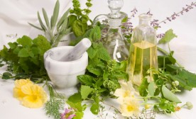 Naturopathy and herbal medicine