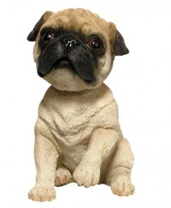 Bobbleheaded pug dog