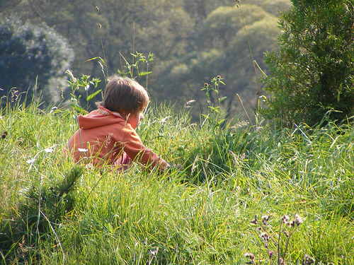 A child sits quietly in the grass