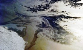 Gulf of Mexico Oil Spill Observed From the International Space Station