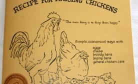 Recipe for Raising Chickens