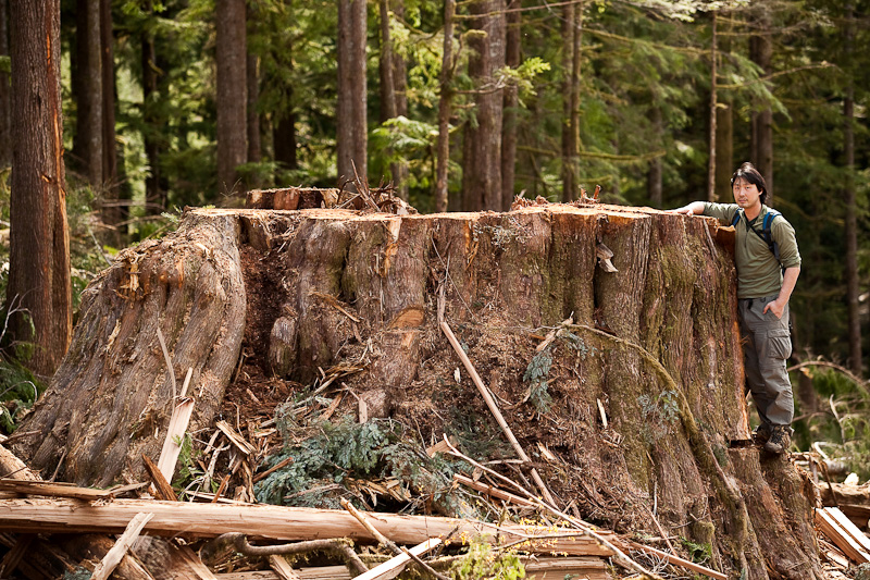 Conservation Jobs Vancouver Island