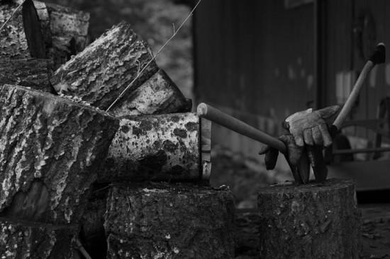 """""""Woodpile"""" Photo © Michael Lebowitz"""