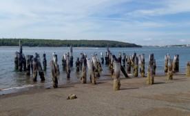 Lawlor Island, Nova Scotia: A Place of Beauty and History