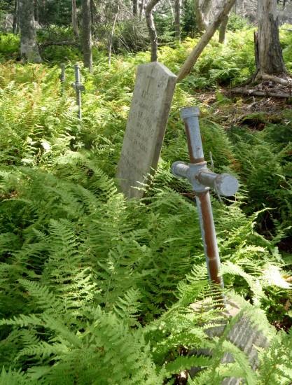 Lawlor's Island cemetery