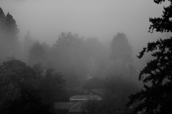 Fog in the Valley © Michael Lebowitz. All Rights Reserved.
