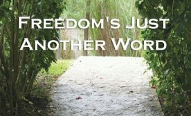 Freedom's Just Another Word – A Book By Dan L. Hays
