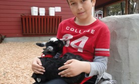 My Luke at Petting Zoo with a dear goat