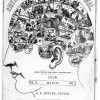 American Phrenology Journal
