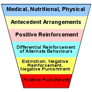 Friedman's Hierarchy