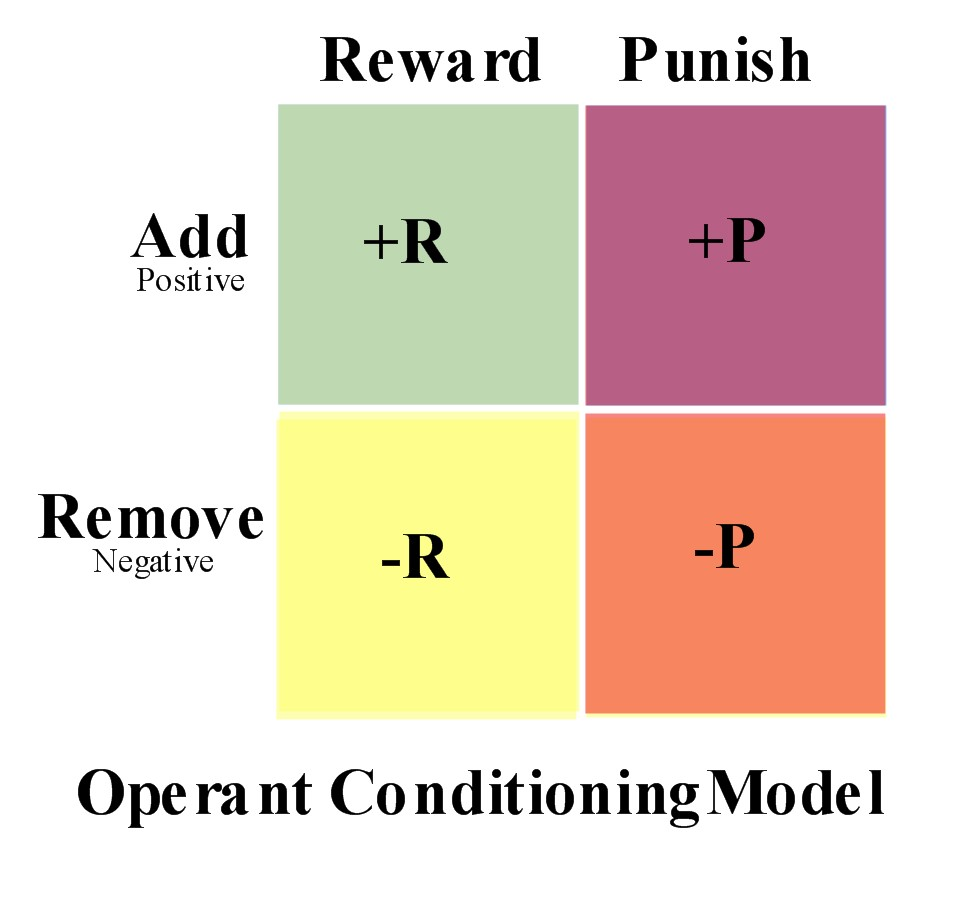 operant conditioning essay operant conditioning essay by plduncan anti essays