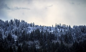 Tarmac Meditations #105: Snow Line