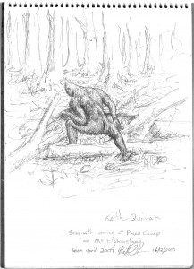 Eyewitness drawing of the sasquatch