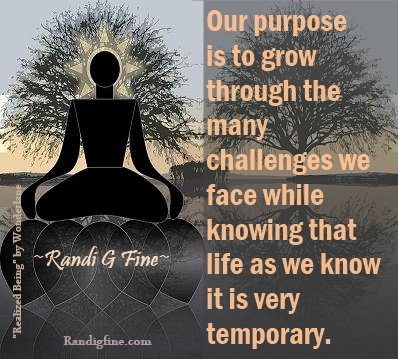 """Purpose of life quote with picture""  http://randigfine.com/?p=4609"