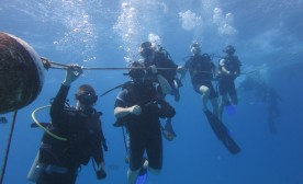 Scuba Tourism And The Death Of Coral Reefs – Part 1