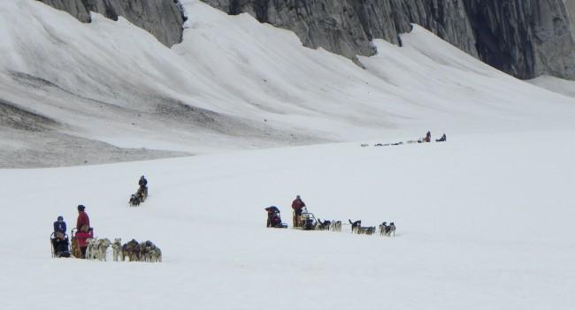 Dog teams near edge of Norris Glacier
