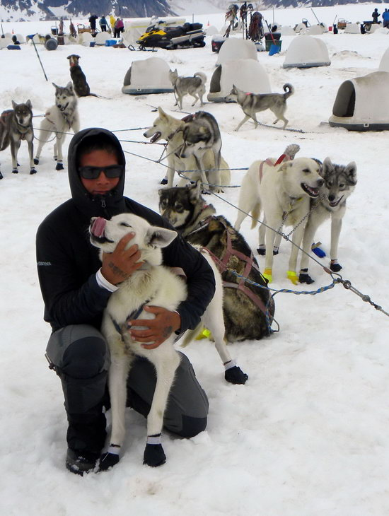 Patrick Mackey: team owner and Iditarod hopeful hugs his lead dog.