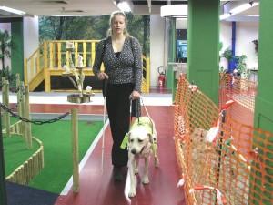 File:guide dog equip. Jpg wikipedia.