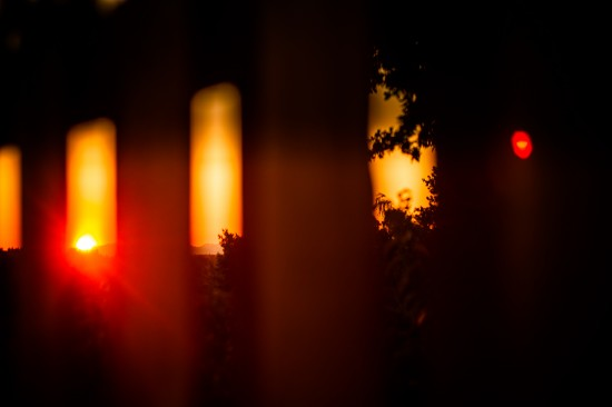 Candles in the Wind #1