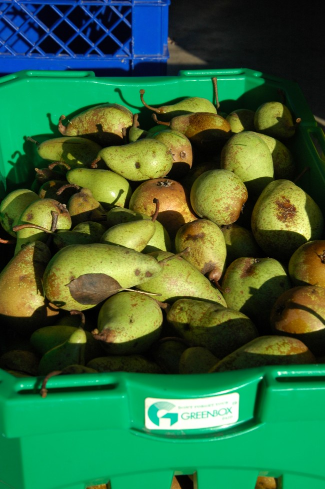 Bringing home the pears