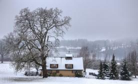 Winter's Cold Breath