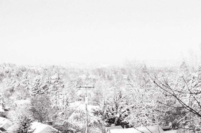 Snow In The Morning