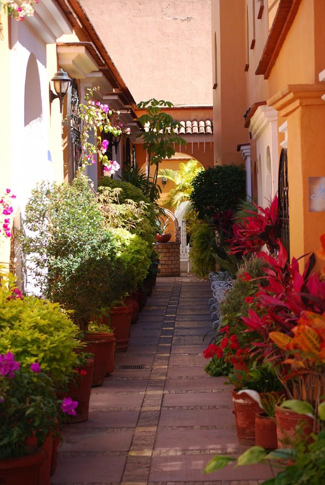 Oaxaca City Alleyway