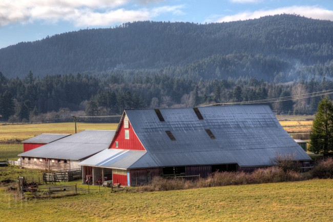 A closer look at the Red Barn - Red Barn - Cowichan Valley, Vancouver Island, BC, Canada