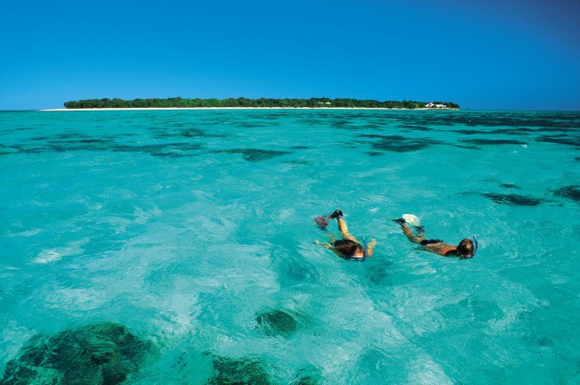 Snorkelling Off Heron Island