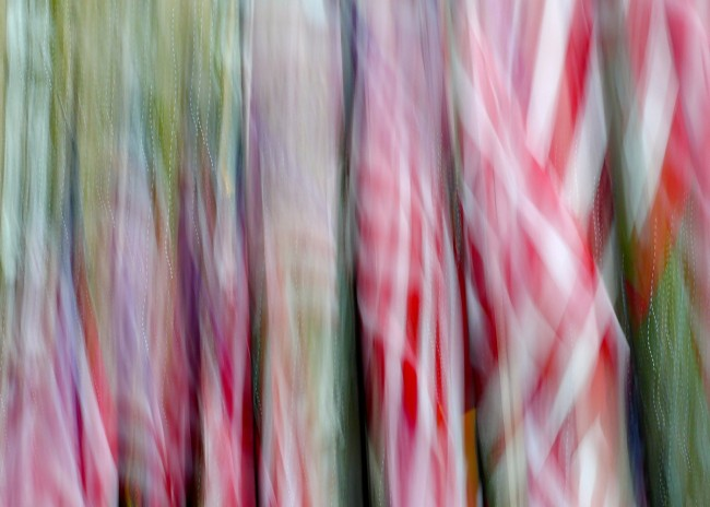 Red, White & Green © Kim Manley Ort