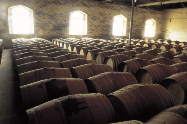 Chateau Tanunda - Tasting/Barrels Room
