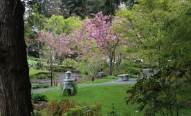 The Japanese Memorial Garden, Mayne Island. Photograph by Charles van Heck.