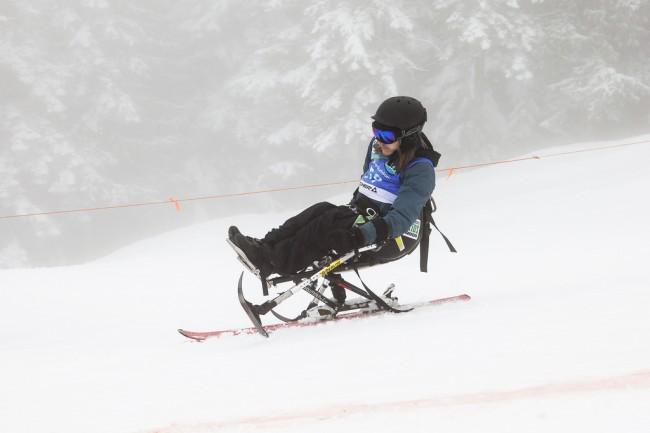 VASS sit skier
