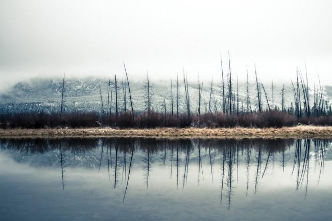 Reflections © Gabriel Harding