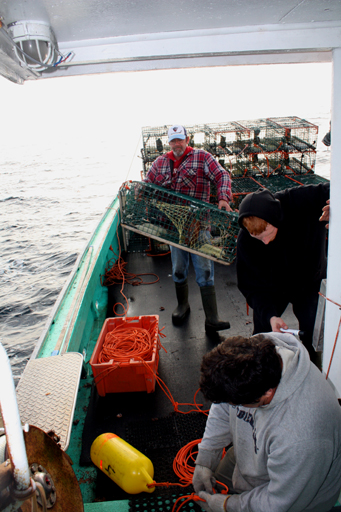 Lobster fishermen in Nova Scotia fish sustainably with traps.