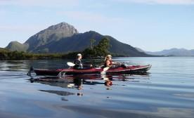 Go Wild in Tasmania