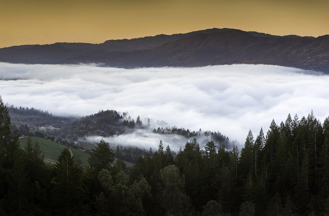 A View of Napa Valley from Howell Mountain.