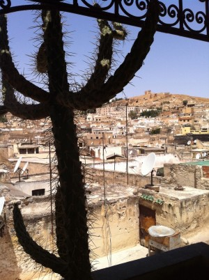 Rooftops of Fez