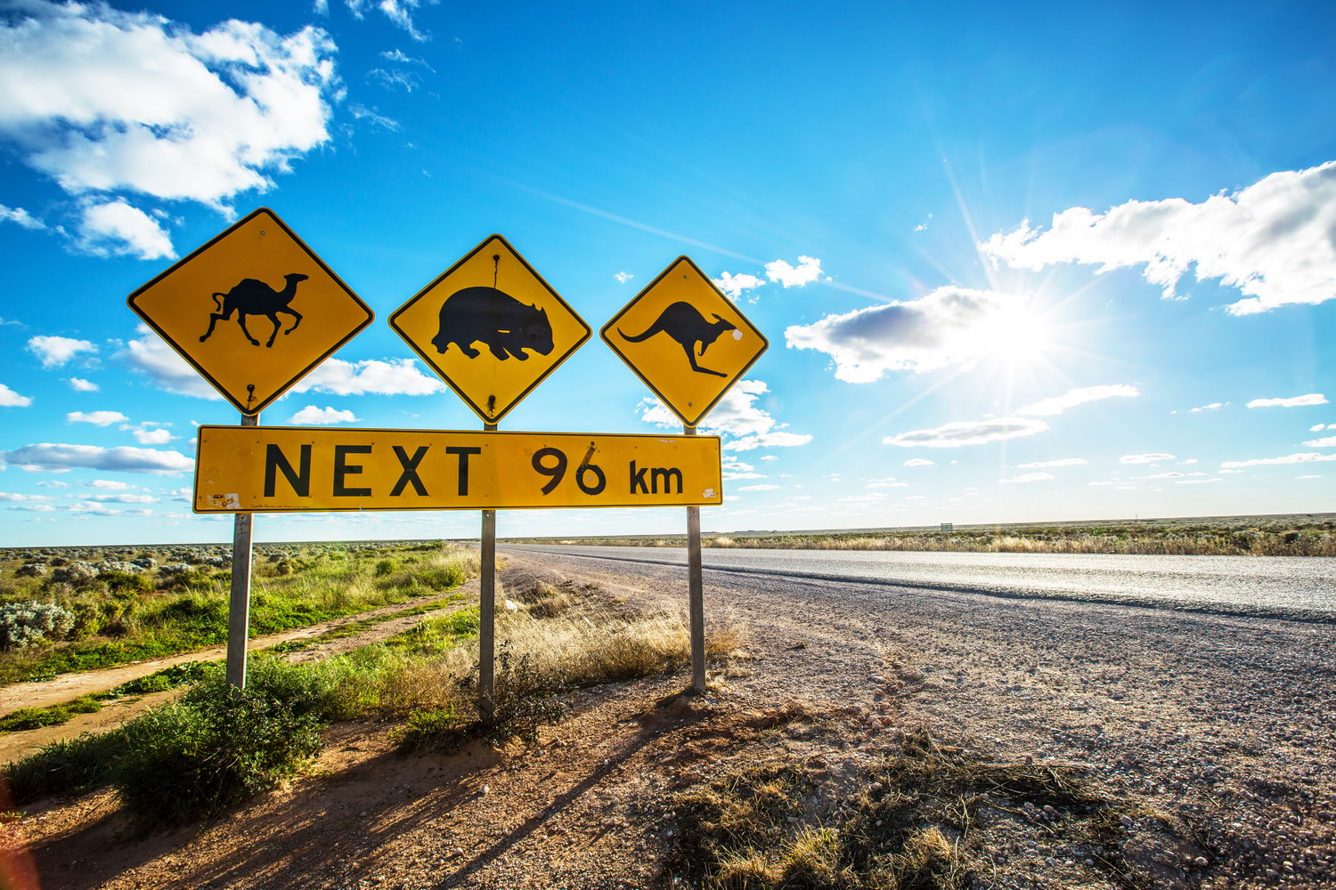 crossing the nullarbor plain life as a human. Black Bedroom Furniture Sets. Home Design Ideas