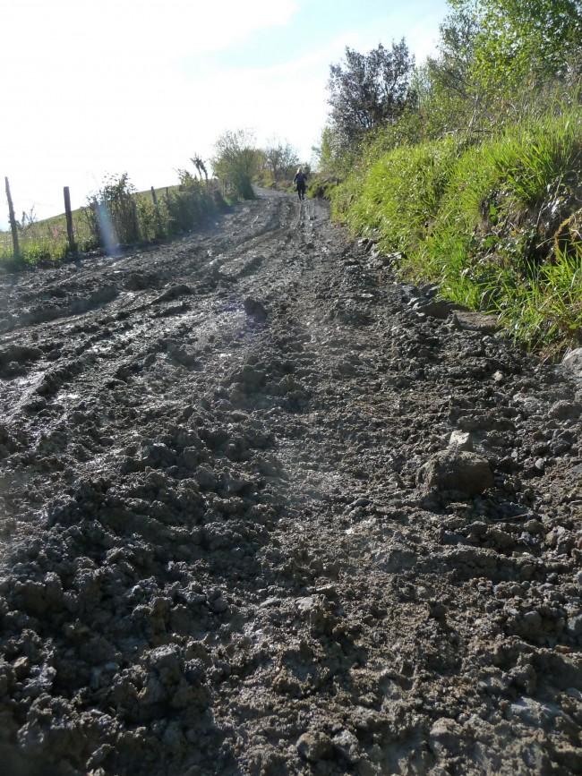 The muddy trail