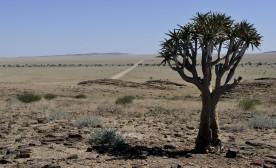 Water Shortages Threaten Namibia's Economy