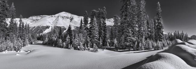 The-Snow-Winter