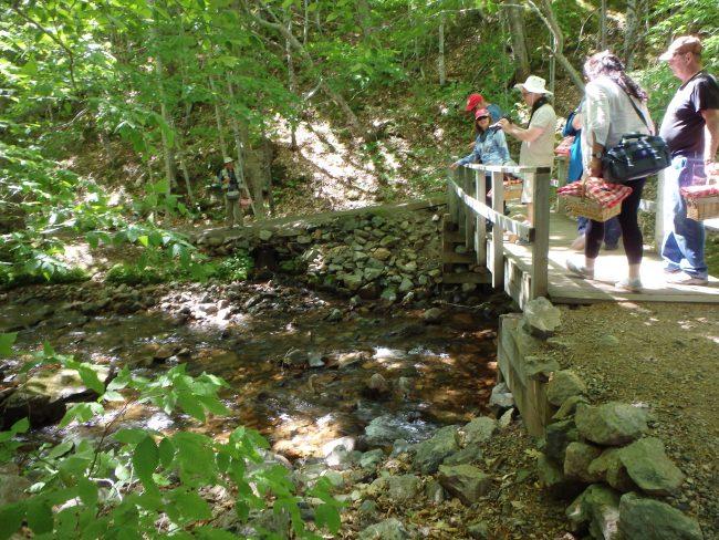 MacIntosh Brook's wooden bridge